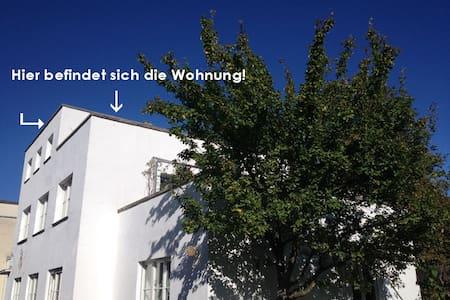 Ab Nov.' 16: Schöne Wohnung-Dachterrasse-zentral - Kassel - Wohnung