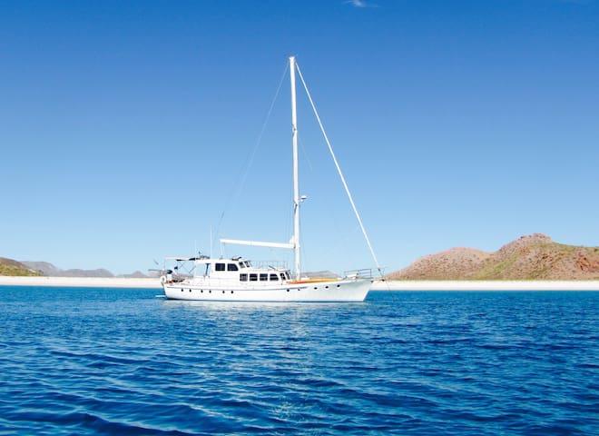 Incredible Yacht Charter Island Adventure