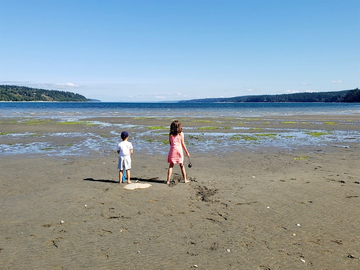 A Home On The Harbor- Beach, Water Views, Quiet, S. Whidbey