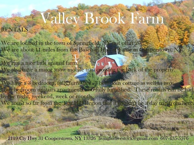 Valley Brook Back Apartment (upstairs) - Cooperstown - Apartemen