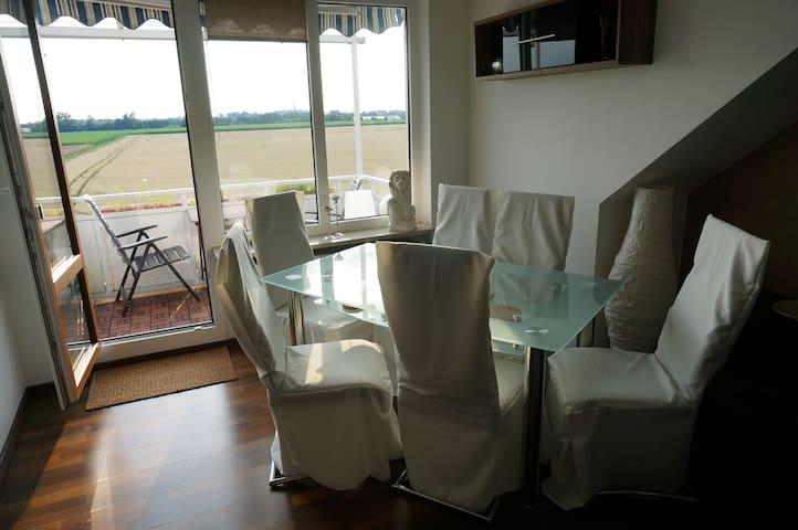 Livingroom with dining area - Wohnzimmer mit Essecke