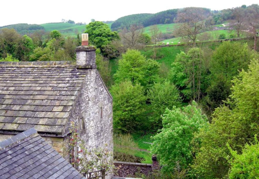 View from the bedroom overlooking the dale