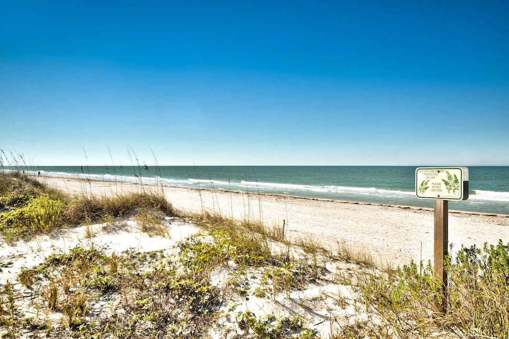 You'll find excellent surf fishing right on the beach.