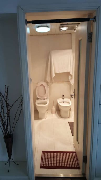 The private bathroom (with bath tub shower)
