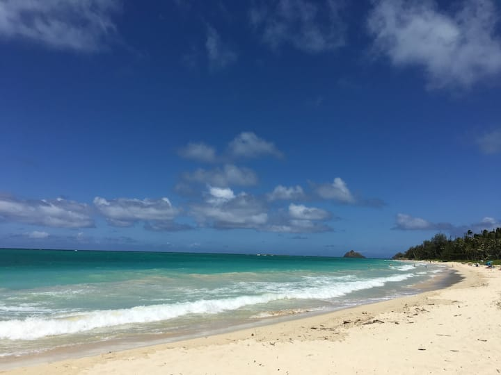 Salty, Sandy Kailua Sea Shores, & So Much More