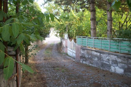 2 katlı bahçeli müstakil ev - Talas - Ház