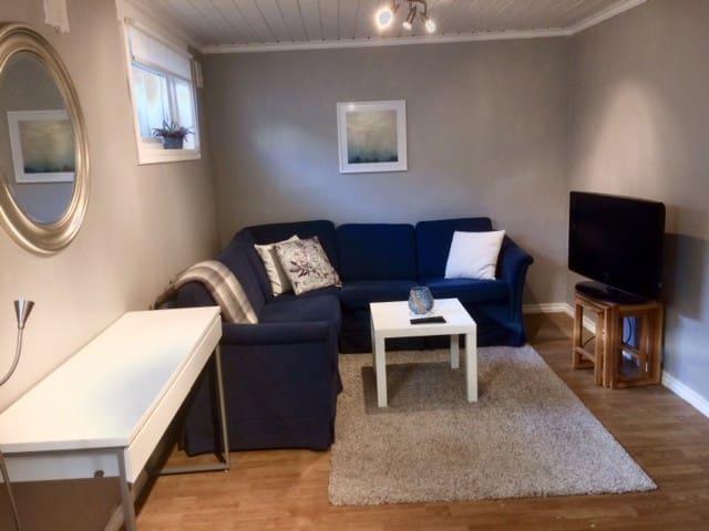 One-room basement apartment