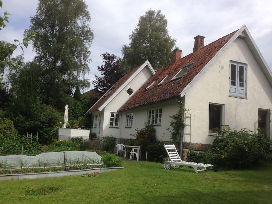 Huset set fra haven med køkkenhave