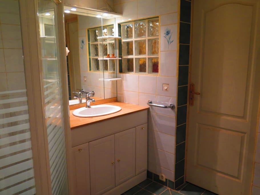 Salle de bain avec douche et baignoire.