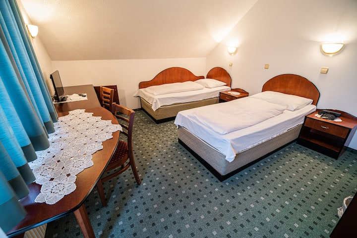 Twin room in Lesce 23