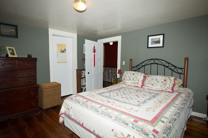 Bed, Breakfast and Beyond in the Heart of the City - Albany - House