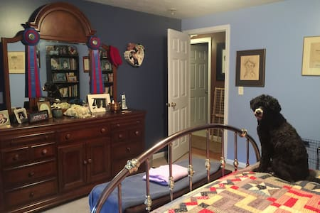 King bedroom/private bath in dog friendly home - Moultonborough