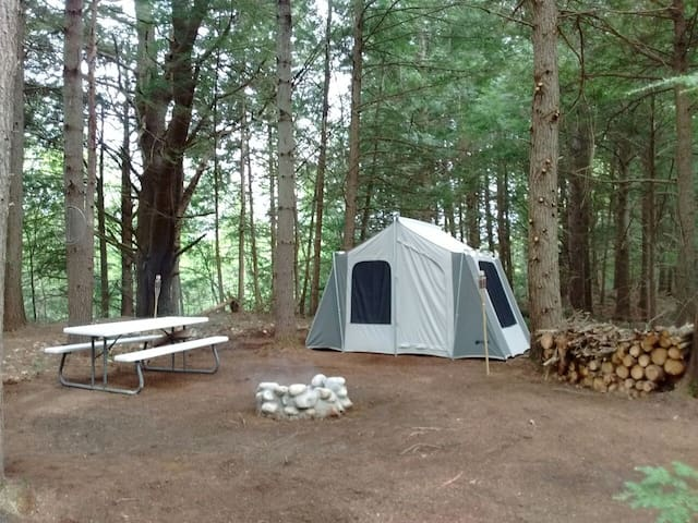 Take Me Tenting (Conifer Site)