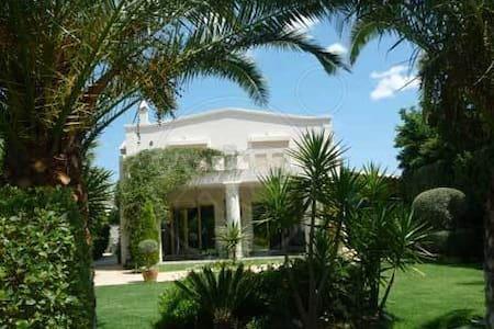 Comfort-luxury house - Anavissos