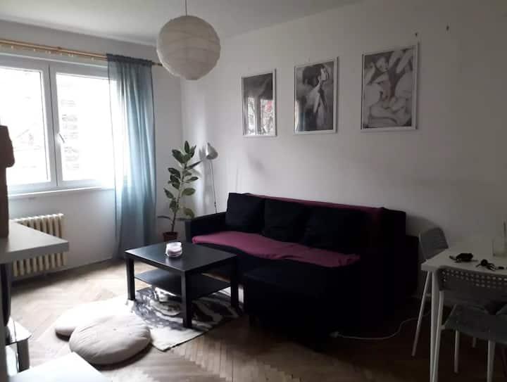 Beautiful cozy flat close to center
