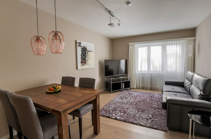 Amazing 1 BR flat, city center (SF14)