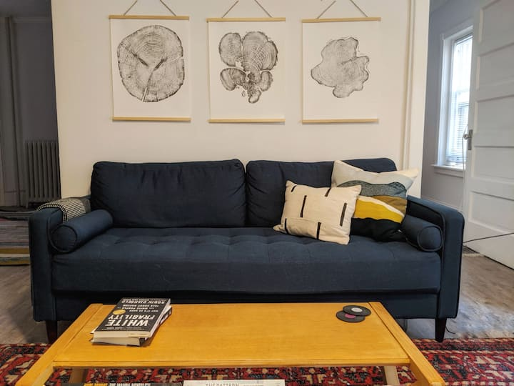 Newly updated apartment in Cap Hill