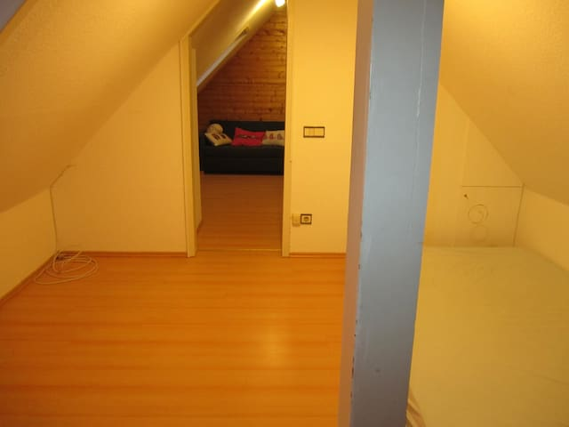 Comfortable Doubleroom in a nice flat - Kaiserslautern - Appartement