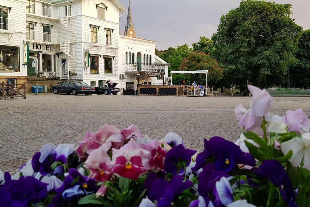 Kungstorget och stadsparken i Lysekil,  endast 300 meter från lägenheten.