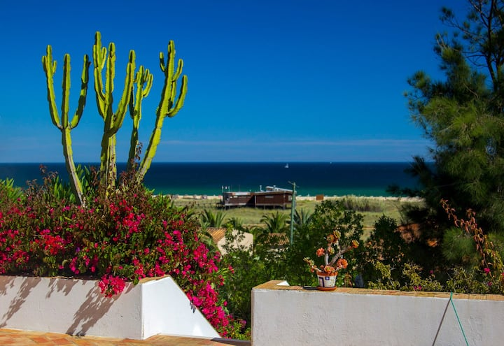 Typical Algarvian Villa by the Sea