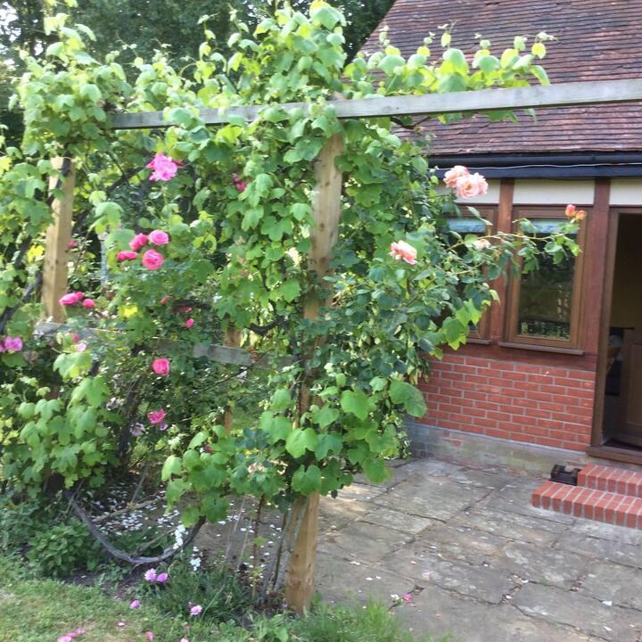 The Studio, Manor House