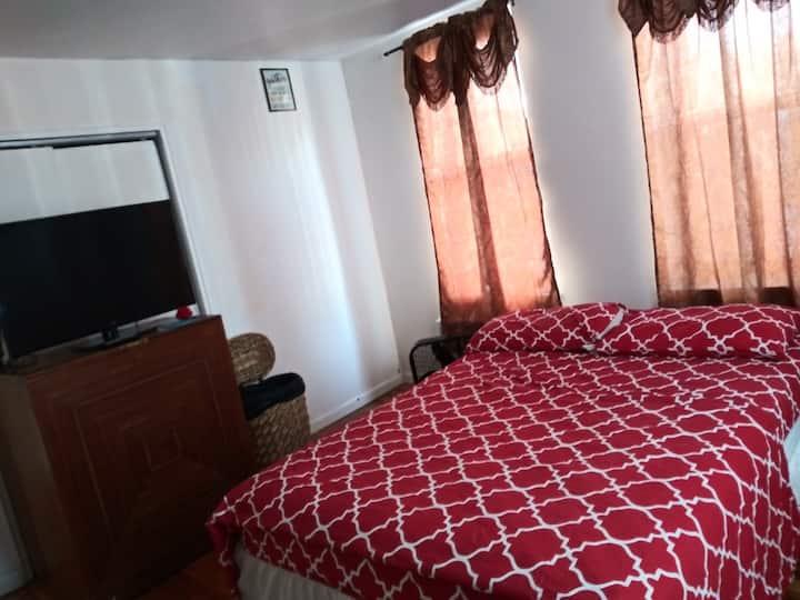 XOXO Bed-Bedstuy XOXO