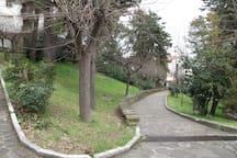 Parco ottimo per percorso vita e running