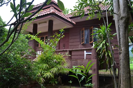 Tree house countryside - Tambon Mae Raem - Bungalo