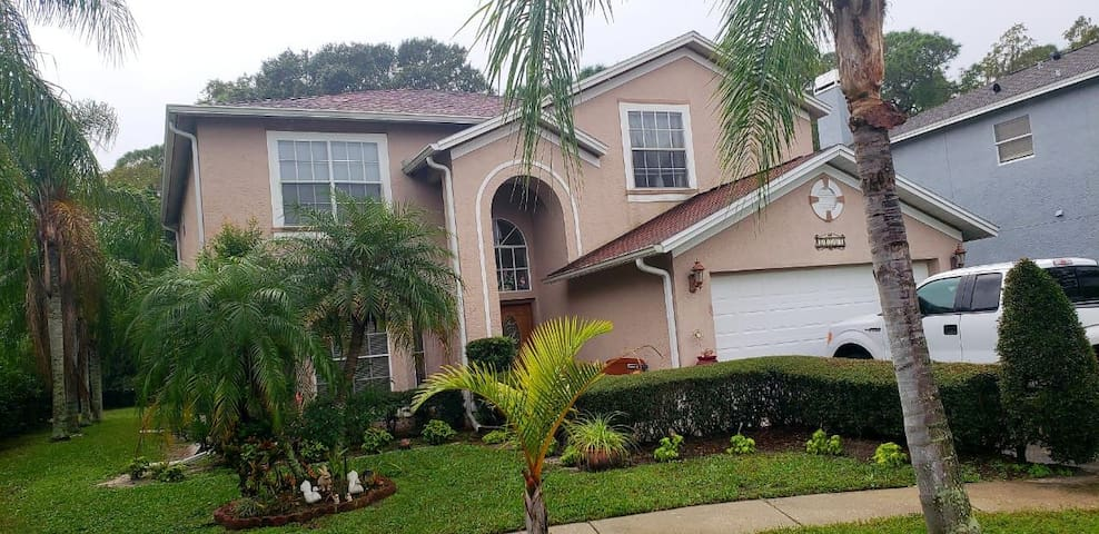 Tampa Pool Home Paradise with Great Location.