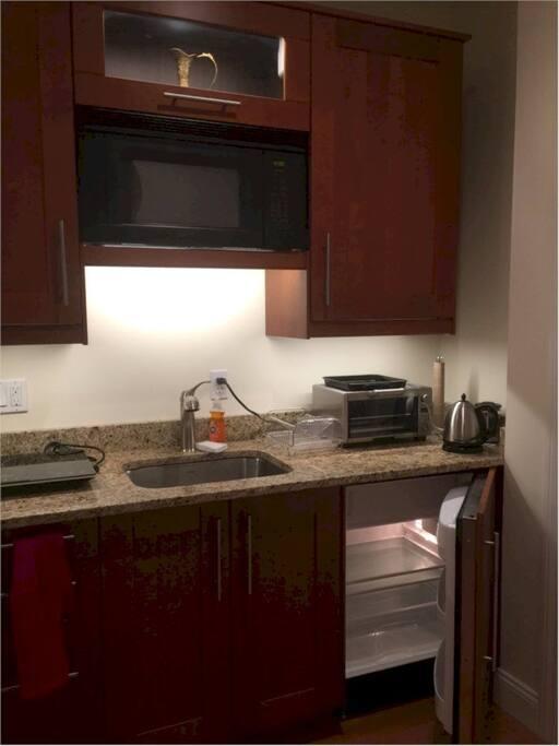 kitchenette with undermount fridge