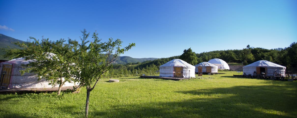 Erica Yurt (accomodate 6 people)