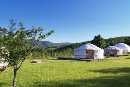 Yurta 4 posti letto (yurta Ciliegia)