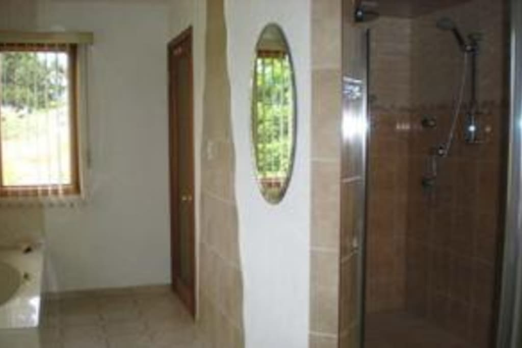 Bathroom, with large jetted shower, bathtub .