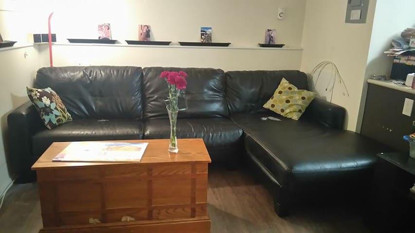 Friendly shared central apartment! - Winnipeg - Apartment