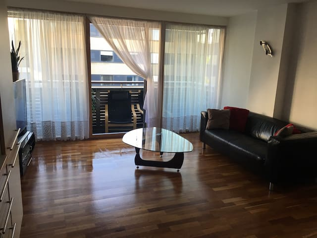 Beautiful spacious 1 bedroom flat with balcony - Lontoo - Huoneisto