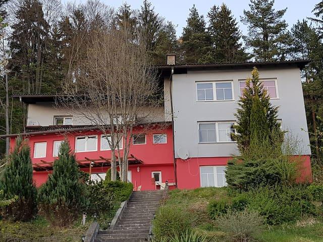 Ferienwohnung in Velden/Kranzlhofen - Kranzlhofen - Apartemen