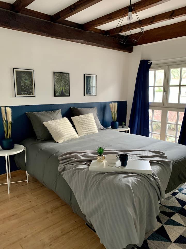 Joli appartement refait à neuf au centre ville