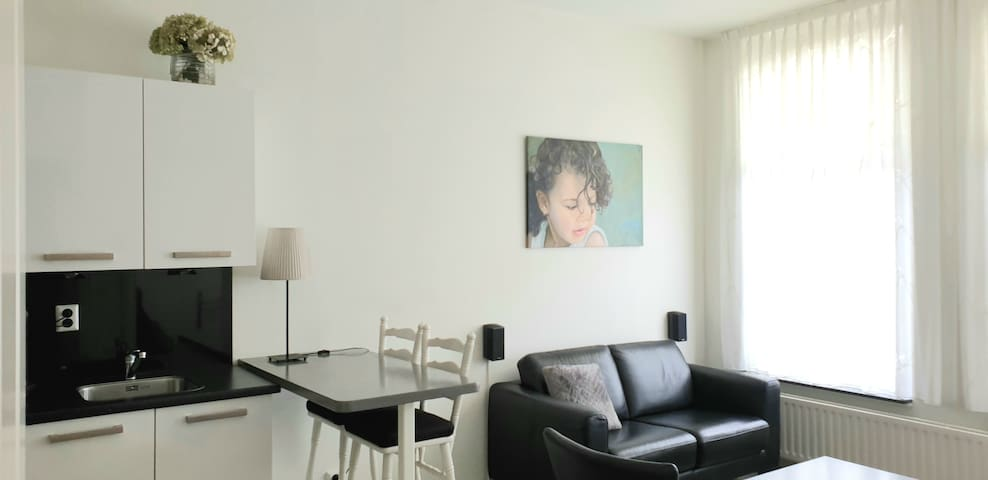 A nice and cosy apartment in the city of Rotterdam