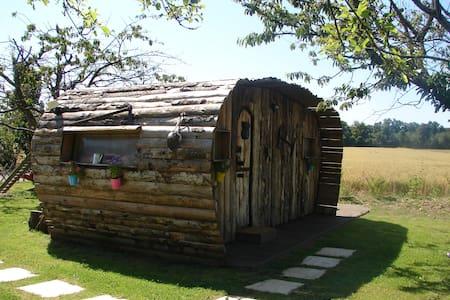 La Cab'âne avec piscine et spa - Saint-Trivier-sur-Moignans - Sommerhus/hytte