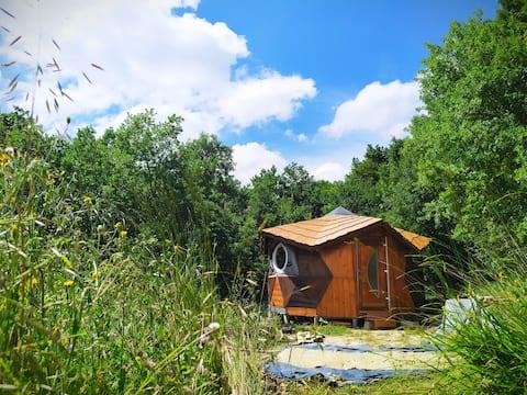 Petite Lune : Le logement insolite avec vu sur les étoiles🌌
