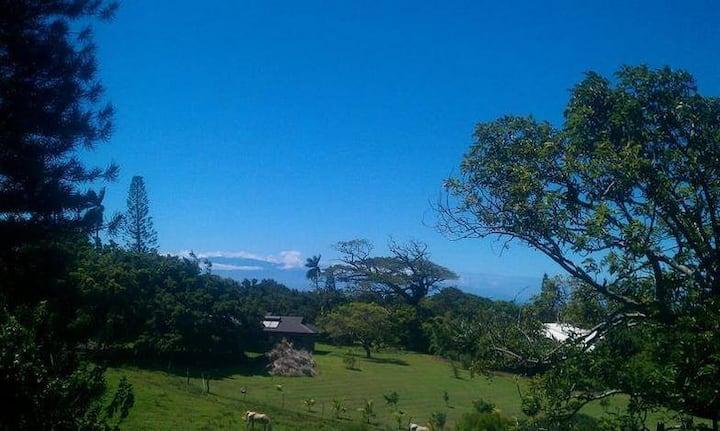 Sundeck Suite Kohala Country Haven Big Isle aptmt.