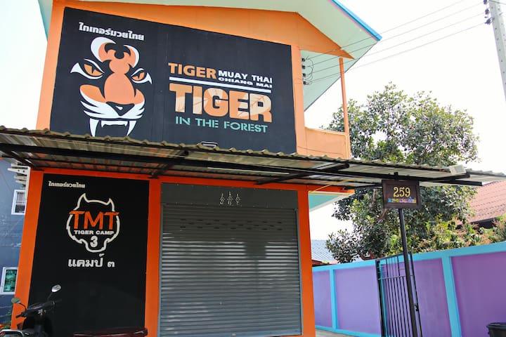 Tiger camp 3 (Standard room)
