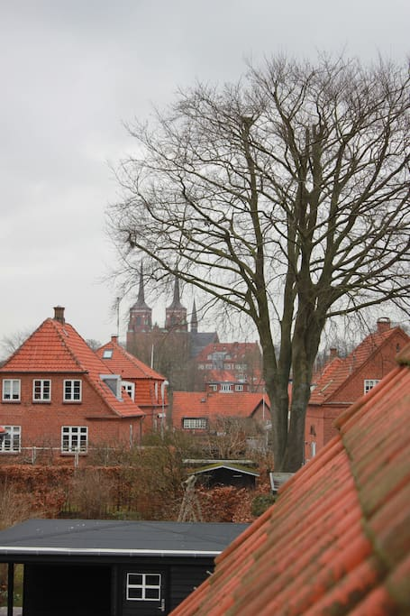 The view to Roskilde Dom church
