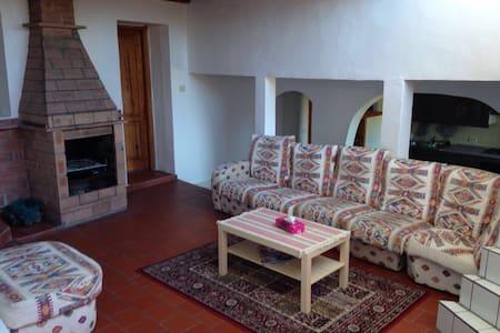 Finca in northern Tenerife.. - Icod de los Vinos - Villa