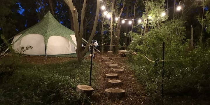 Glamping in the Trees - Pinot Gris