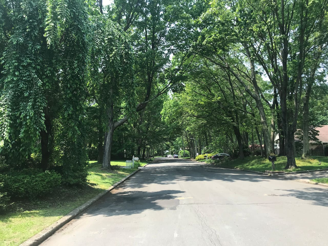 Located on a beautiful, quiet, tree-lined street
