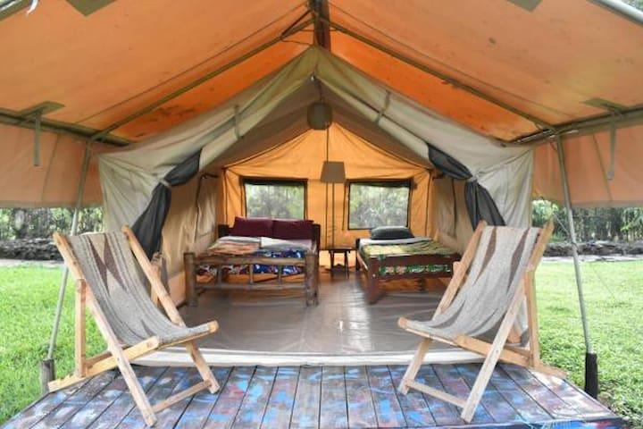 RedRocks Hostel & Campsite - Safari Twin Tent