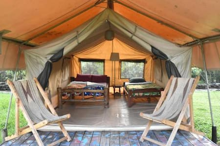 RedRocks Hostel & Campsite - Safari Twin Tent