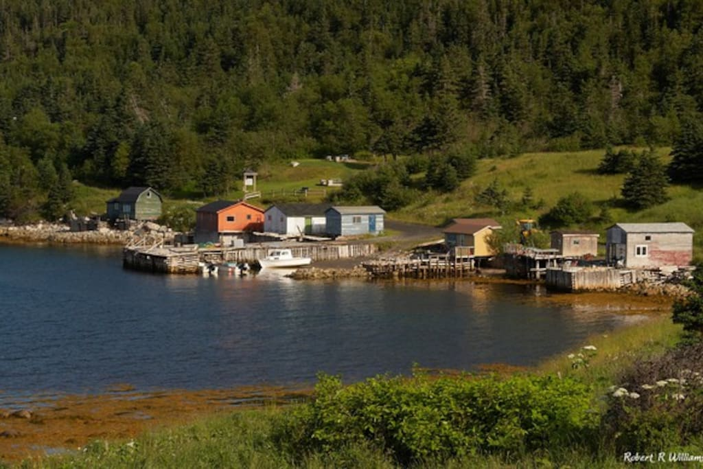 The view of Whale Cove! Fishing stages in front of the James Humber Park and Jenniex trail hiking trail access. The house is situated less then 100 metres to the right of this photo