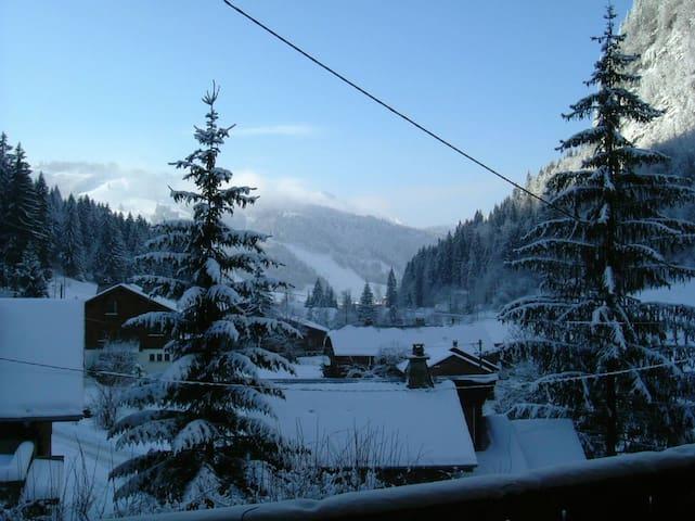 Free ski bus - 20 metres. Sleeps 6-8. Morzine 1km. - Morzine - Casa